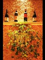 http://www.alburakathisma.com/images/galeri/orjinal/albura-Garden-72.jpg